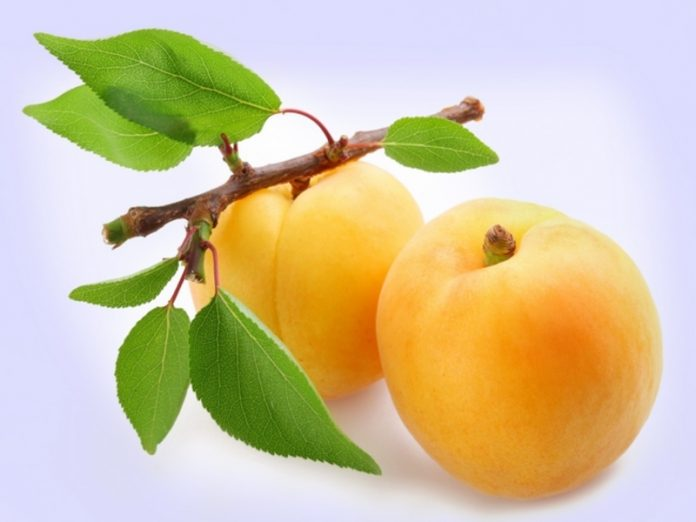 The nutritionist warned of the dangers of apricots