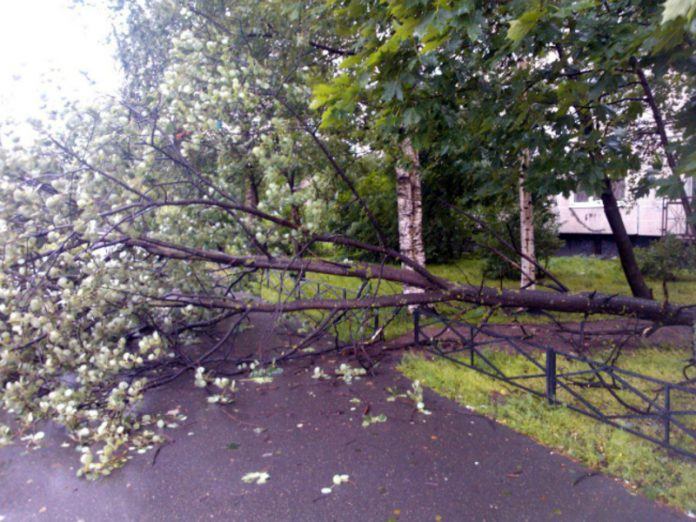 The storm hit in the Kuzbass and Altai Krai: roofs are torn off, damaged dozens of cars