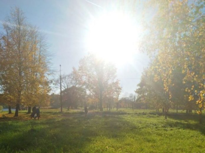 In St. Petersburg open parks and a summer cafe