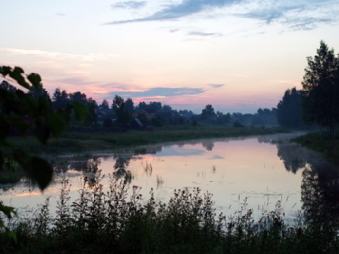 In the Gatchina district of the Leningrad region drowned two pensioners