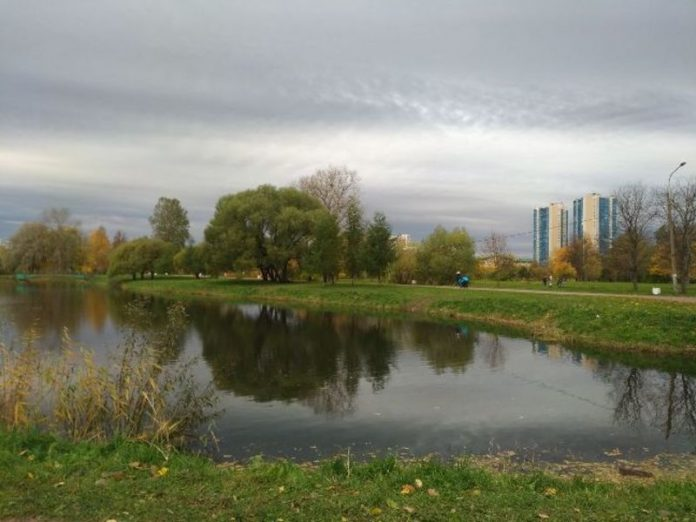 Man drowned in a pond in the South of Moscow