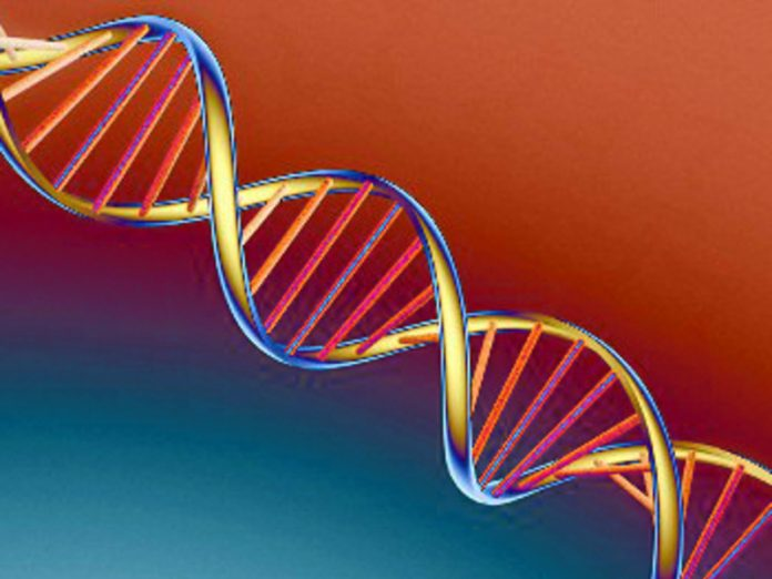 National database of genetic information in Russia is expected to be fully launched in 2024