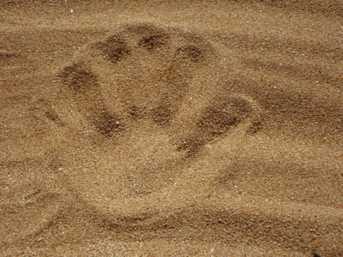 On the beach in Anapa, brothers, playing, child buried in sand — he died