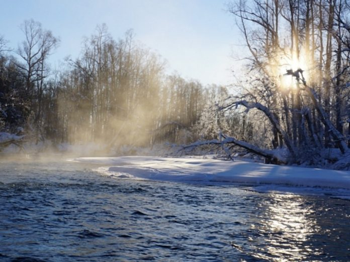 Residents of Kamchatka are asking Putin to save miners from a spawning river