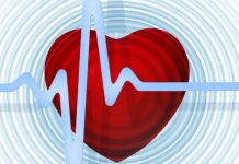 Scientists have learned that leads to sudden heart attack