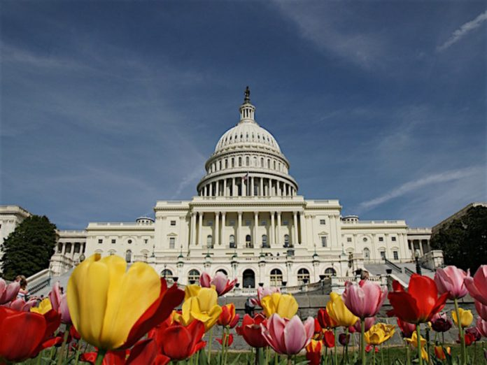 The mayor of Washington has announced the introduction of a curfew amid mass unrest