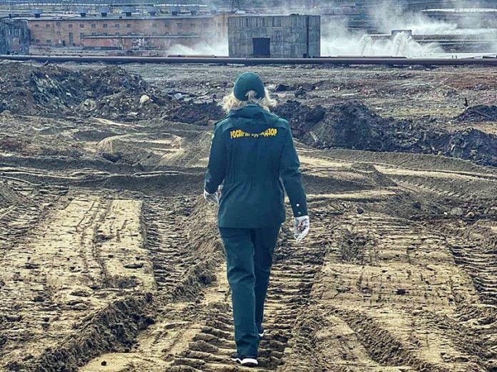 WWF called for Potanin to take responsibility for the disaster in Norilsk