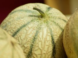 A nutritionist told for whom the melon can be dangerous