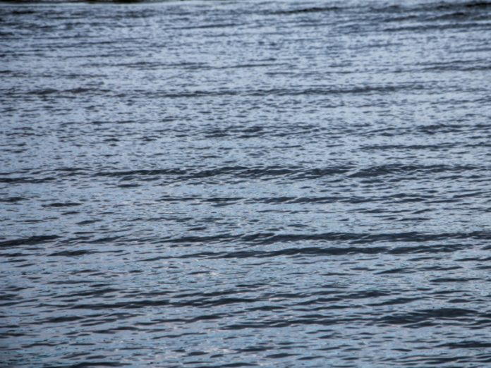 A resident of Kaliningrad fell into the river on the car and drowned