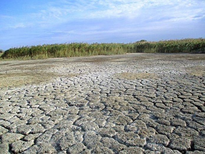 Drought threatens to destroy crops in the five regions