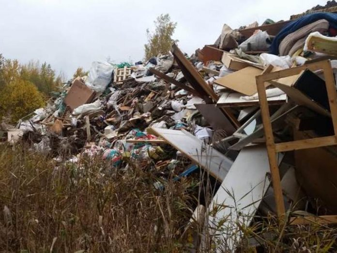 Illegal dump in the Pushkin district eliminate after intervention of Prosecutor's office