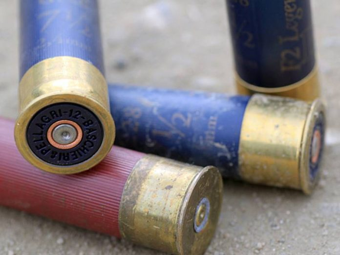 In a potential accomplice Lutsk terrorists have found a weapon and ammunition