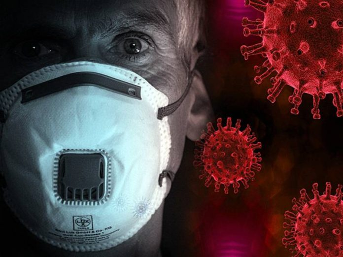 In Brazil per day from coronavirus died 1233 people