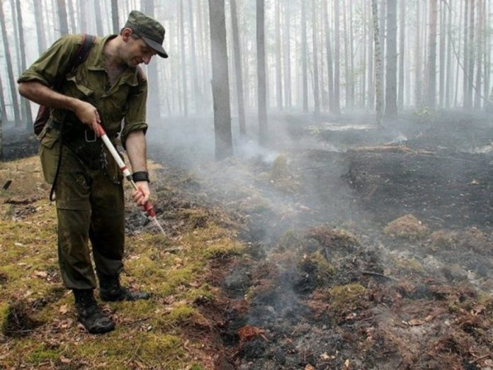 In five regions of Russia introduced a state of emergency due to forest fires