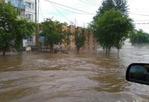 In Novosibirsk, the children took advantage of the flood and swam in the pools (video)