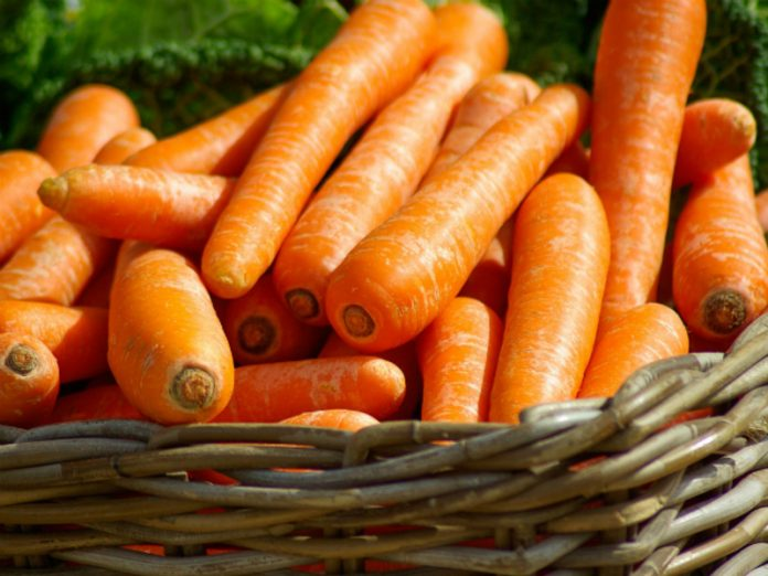In Russia for a week have risen in price much carrots and apples