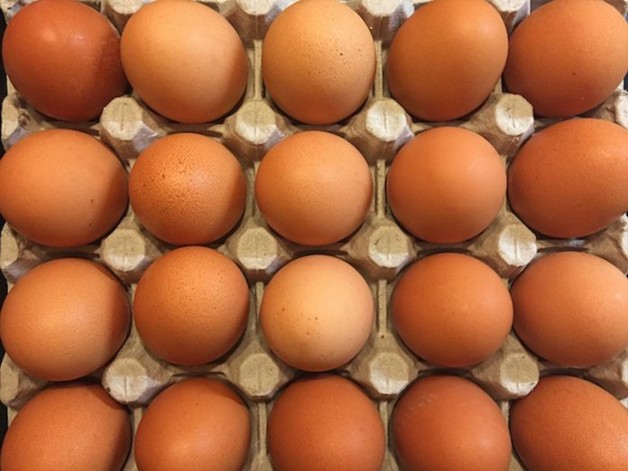 In Ufa the voters offer to buy eggs on the ruble