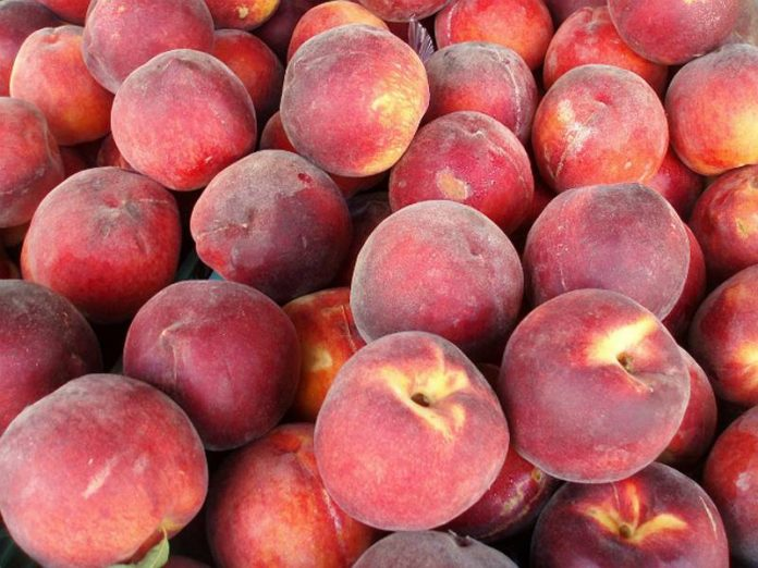 More than 5 tons of contaminated peaches destroyed in the suburbs