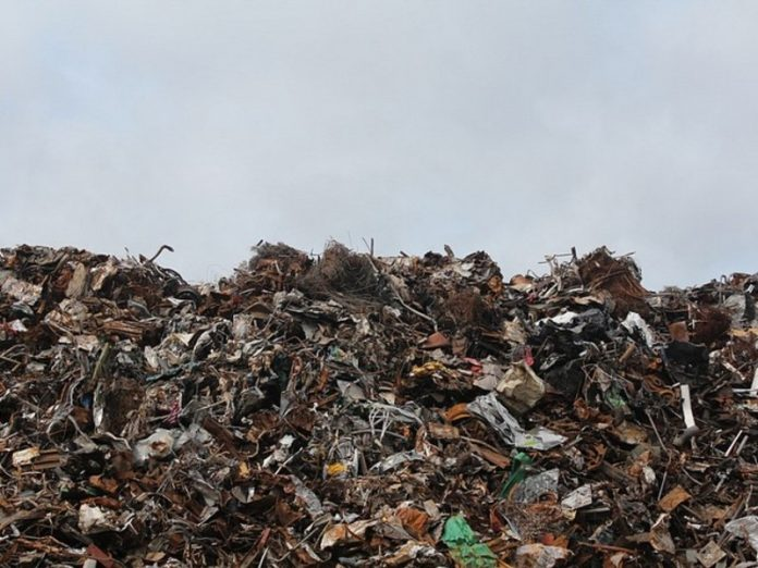 Residents of the Leningrad region want to close the garbage dump the size of two Palace square