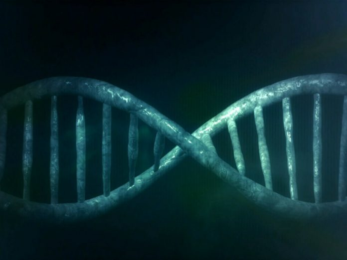 Scientists have uncovered a genetic secret of immortality