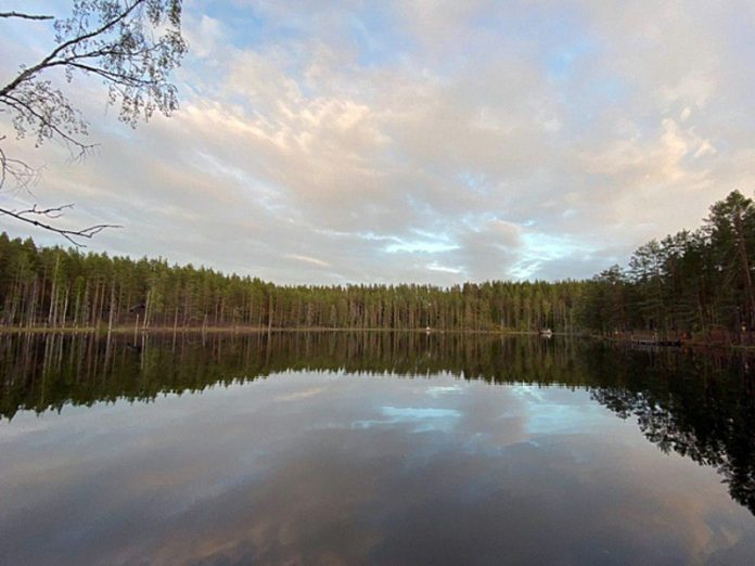 Since the beginning of summer in St. Petersburg and Leningrad region drowned 40 people