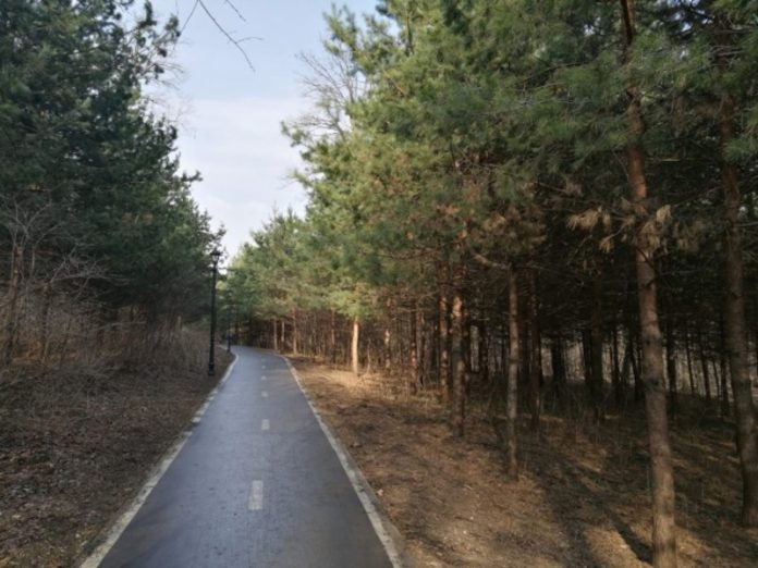 Sobyanin told about the new specially protected natural territories of the capital