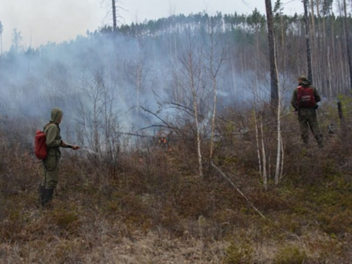 The investigative Committee began checking due to major forest fires in Ugra
