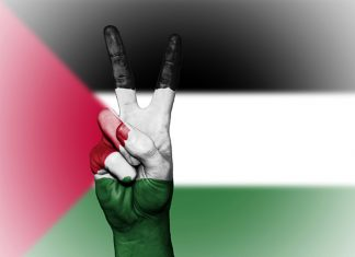 Palestine withdrew its Ambassador from UAE, normalitalic relations with Israel